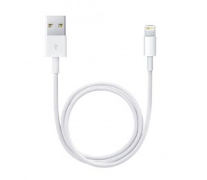 Apple Lightning to USB Cable | White