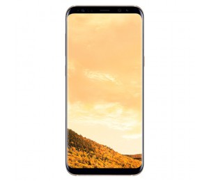 Samsung Galaxy S8 Plus | Gold